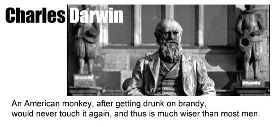 Evolution of link building Darwin