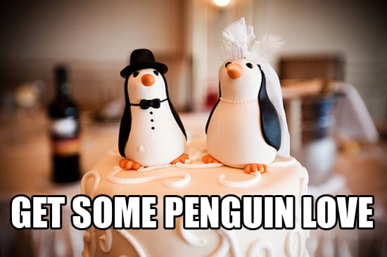 google penguin love-in