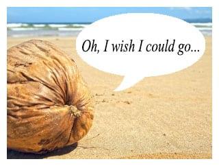 coconut wants con