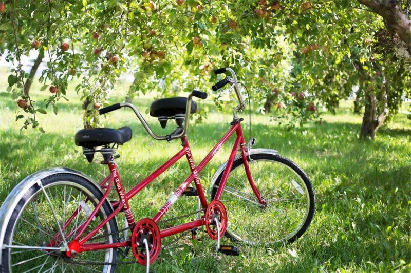 Tandem bicycle labeled web writer - web weaver